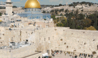 Muszlimok és zsidók