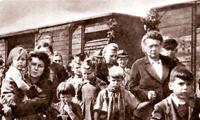 A hazai németek kitelepítéséről nem tehetünk, nagyhatalmak erőszakolták ránk