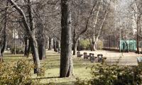 Városmajori park